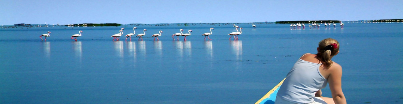 Chilika Lake Odisha